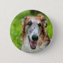 borzoi on a grass button