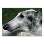 Borzoi, Russian Wolfhound Card
