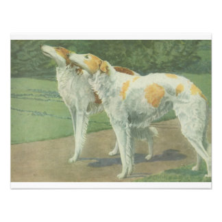 Borzoi Russian Wolfhound Personalized Announcement