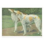 Borzoi (Wolfhound ruso) Invitación