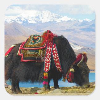 Bos Grunniens de los yacs cerca del lago Tíbet Pegatina Cuadrada