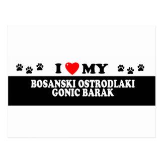 BOSANSKI OSTRODLAKIGONIC BARAK_ POSTCARD