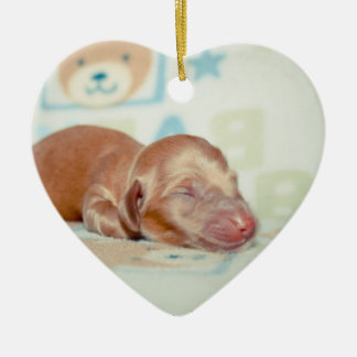 Boscoe Newborn-Lovebugdoxies puppy keepsake Ceramic Ornament
