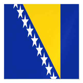 Bosnia and Herzegovina Flag Magnetic Card