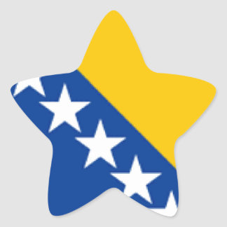 Bosnia and Herzegovina Flag Star Sticker