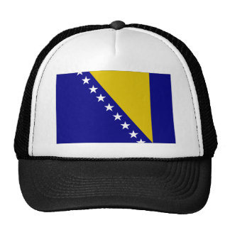Bosnia and Herzegovina Flag Trucker Hat