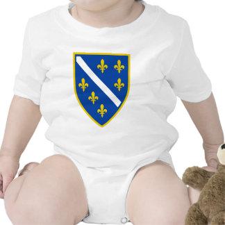 Bosnia Camisetas