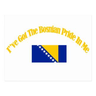 bosnian patriotic flag designs postcard