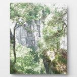 bosque alemán placa de madera