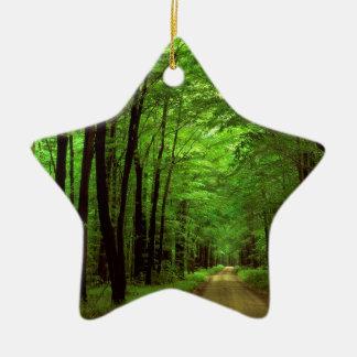 Bosque Allegheny Pennsylvania Adorno Navideño De Cerámica En Forma De Estrella