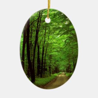 Bosque Allegheny Pennsylvania Adorno Navideño Ovalado De Cerámica