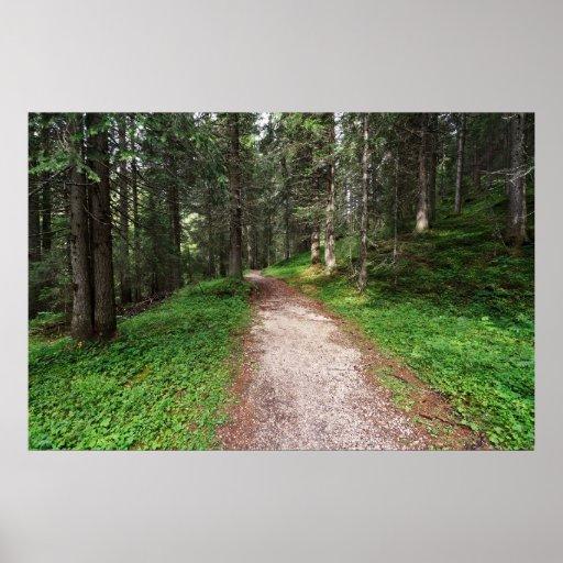 bosque alpino posters