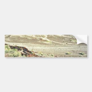 Bosque aterrorizado - parque nacional del desierto etiqueta de parachoque