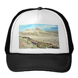 Bosque aterrorizado - parque nacional del desierto gorros bordados