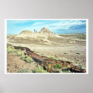 Bosque aterrorizado - parque nacional del desierto póster