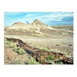 Bosque aterrorizado - parque nacional del desierto tarjeta postal