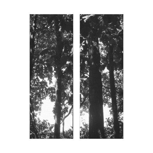 Bosque blanco y negro impresiones de lienzo