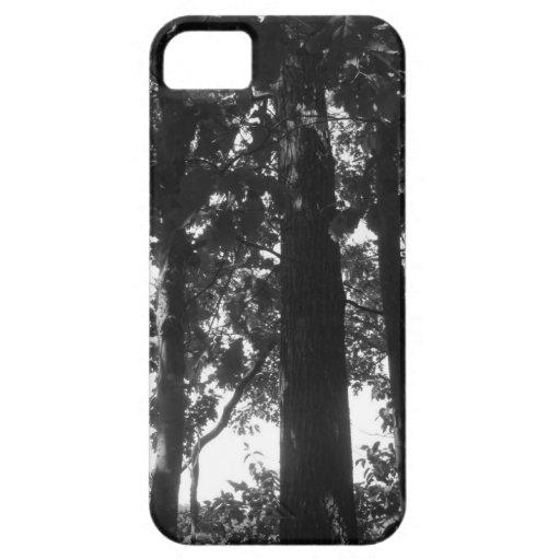 Bosque blanco y negro iPhone 5 protector