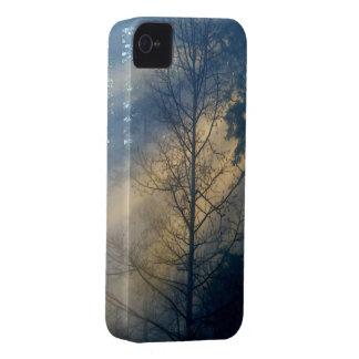 Bosque brumoso en el caso de Blackberry del paisaj iPhone 4 Case-Mate Cobertura