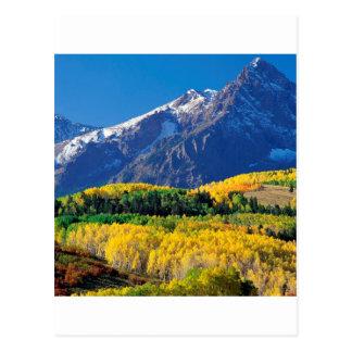 Bosque Colorado de Sneffels Uncompahgre del parque Postales
