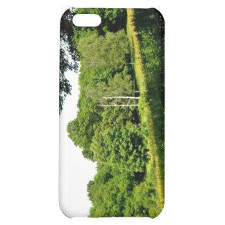 Bosque con los árboles y la hierba verdes