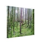 Bosque con muchos árbol lienzo envuelto para galerias