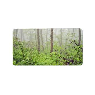 Bosque con niebla etiqueta de dirección