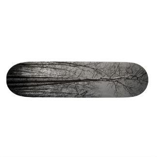 Bosque de árboles patinetas personalizadas