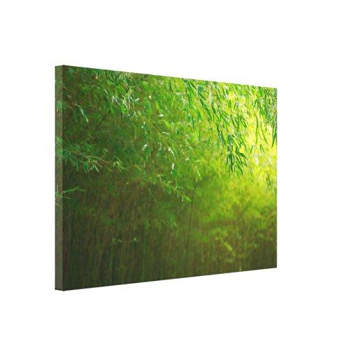 Bosque de bambú impresion en lona