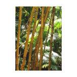 Bosque de bambú lienzo envuelto para galerías