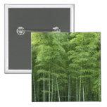 Bosque de bambú pin cuadrado