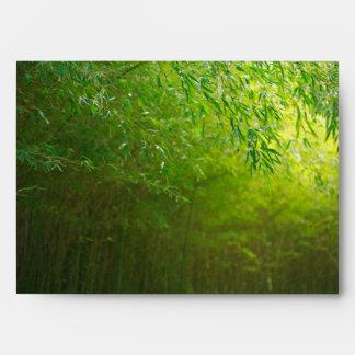 Bosque de bambú sobre