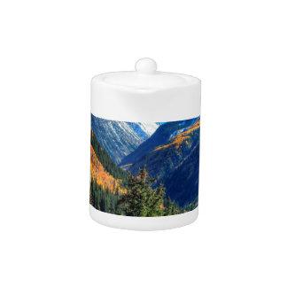 Bosque de centro de la cala de la montaña