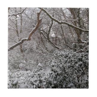 Bosque de Epping en invierno Azulejos