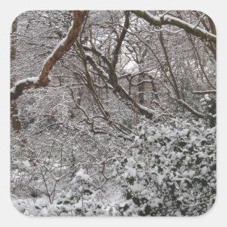 Bosque de Epping en invierno Pegatina Cuadrada