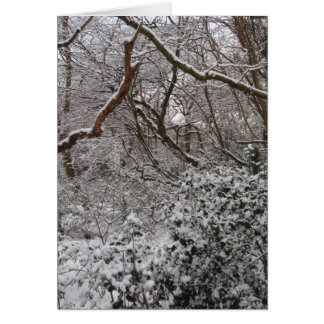 Bosque de Epping en invierno Tarjeta De Felicitación