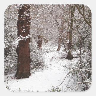Bosque de Epping en la nieve Colcomanias Cuadradas Personalizadas