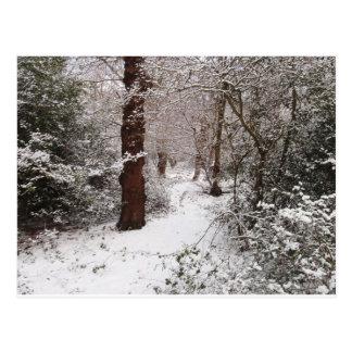 Bosque de Epping en la nieve Postal