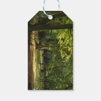 Bosque de Epping Etiquetas Para Regalos