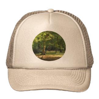 Bosque de Epping Gorras De Camionero
