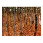 Bosque de Gustavo Klimt del arte de Fne de los Postal