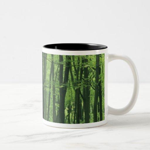 Bosque de Inglaterra, de la haya y Bluebells Taza De Dos Tonos
