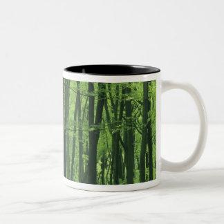 Bosque de Inglaterra, de la haya y Bluebells Taza Dos Tonos