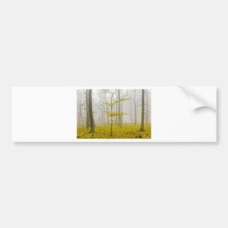 Bosque de la fantasía con las hojas de la niebla y pegatina para auto