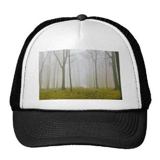 Bosque de la fantasía con niebla y follaje gorra
