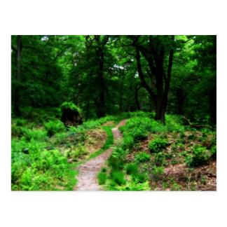 Bosque de la fantasía postal