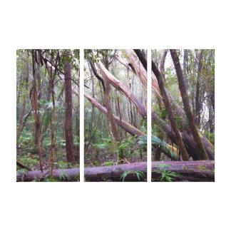Bosque de la impresión caida de la lona de los lona envuelta para galerias
