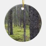Bosque de la montaña adorno de navidad