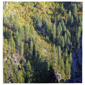 Bosque de la montaña servilleta