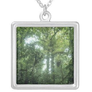 Bosque de la nube de Monteverde, Costa Rica. Colgantes Personalizados